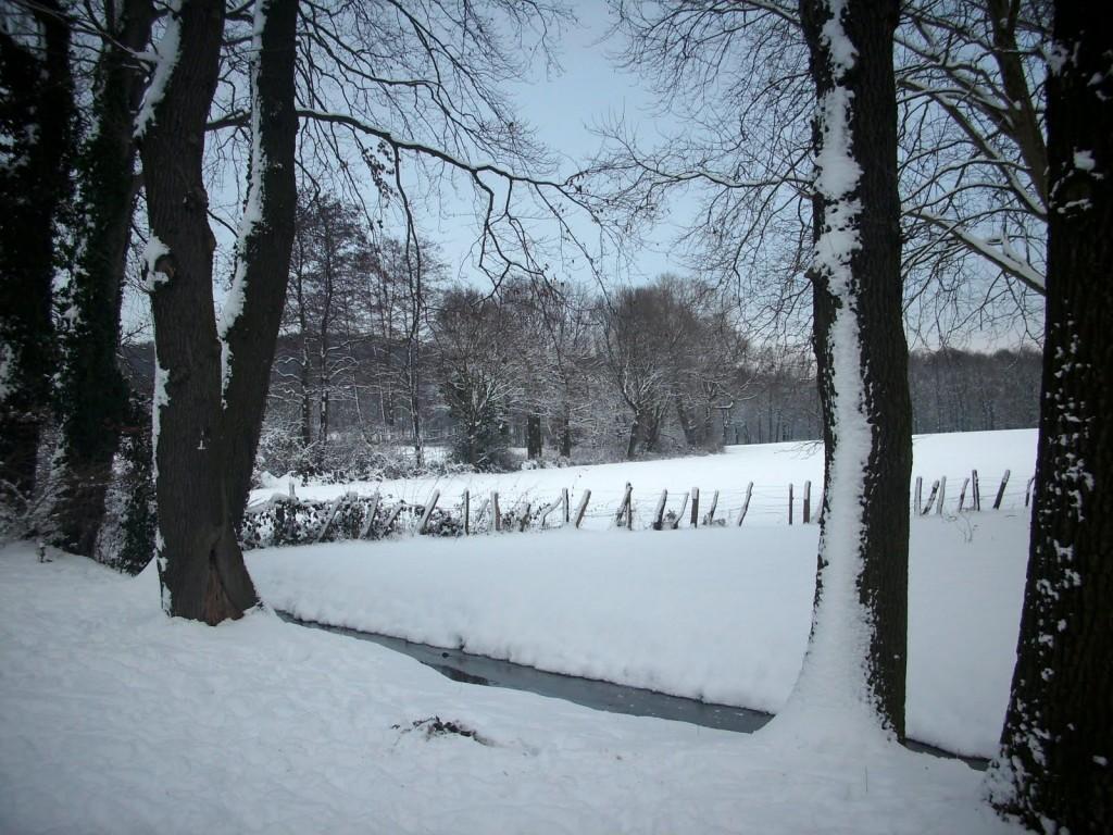 Winterbild vom Struckmannsberg in Lünen am 18.12.2010